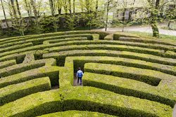Academic gets lost in a maze